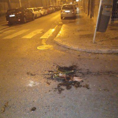 El test que ha tirat una espanyolista a uns republicans a Palma
