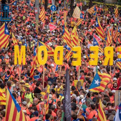 Una imatge de la manifestació de la Diada/ Marc Puig