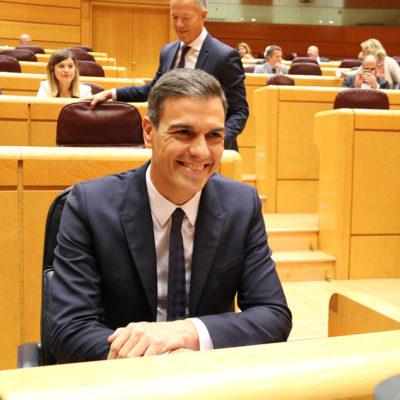 El president del govern espanyol, Pedro Sánchez, al Senat