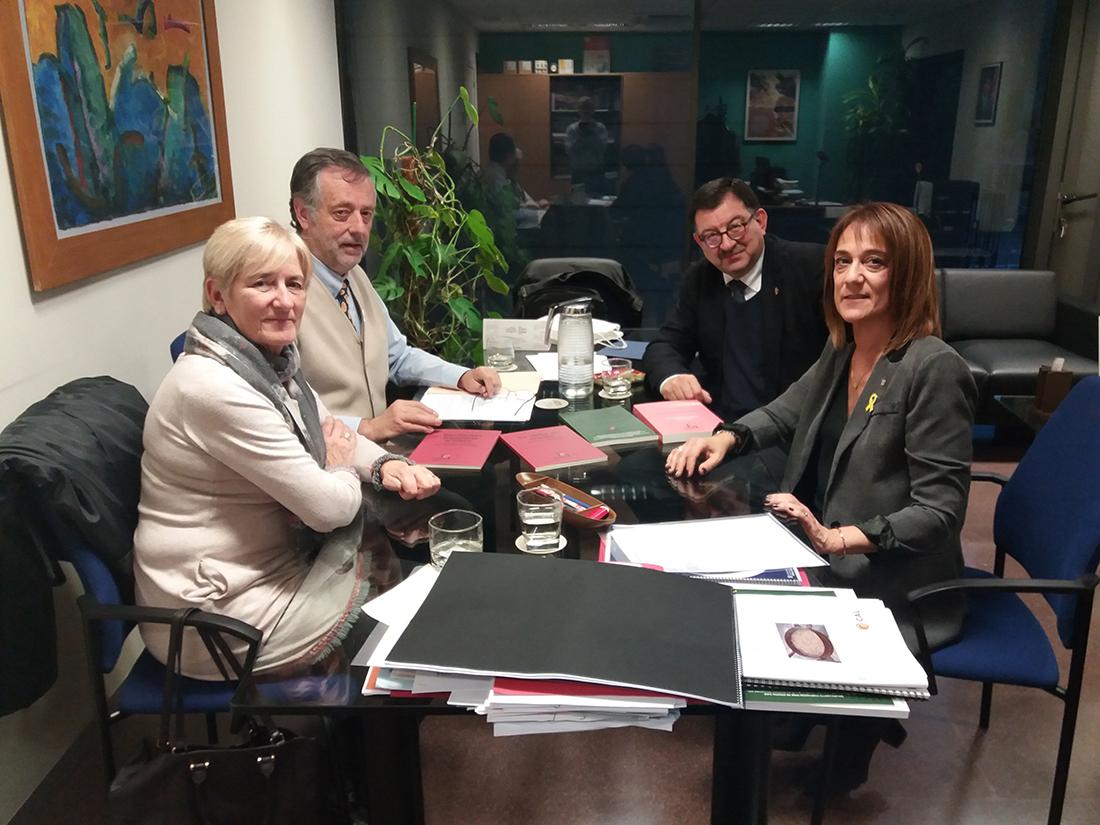 La reunió de l'IEA a la seu de la direcció general de Política Lingüística de la Generalitat