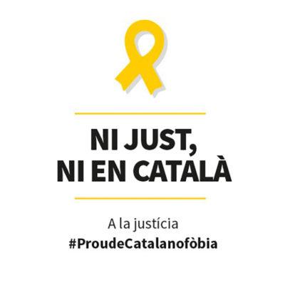 Imatge de la 'Plataforma per la Llengua' de cara al judici de l'1-O/ Twitter @llenguacat