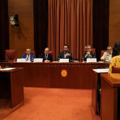 Florentino Pérez, en la comissió d'investigació del Parlament sobre el Castor