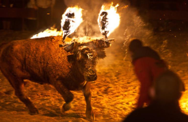 El Toro Jubilo és d'Interès Turístic des de l'any 2.002