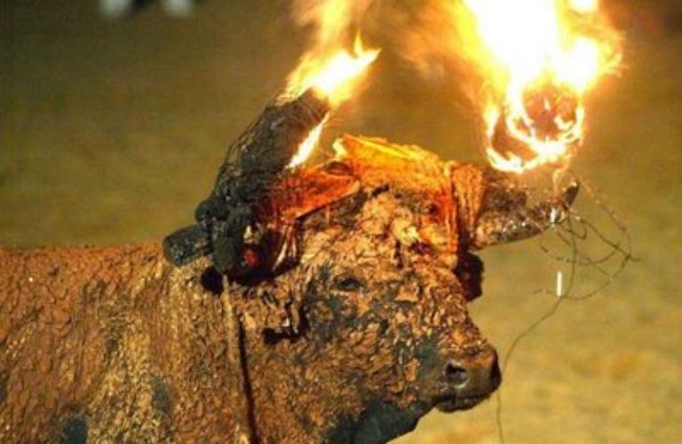 L'animal sovint mor cremat viu